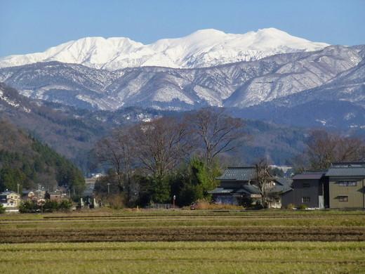 勝山市からの雪の白山 (1)(住所:福井県勝山市 )|自然人ネット